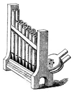 Exactly What Is an Organ…and How Does it Work?